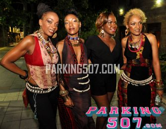 afro-latino_festival_nyc_2015_252_20150713_1525219675